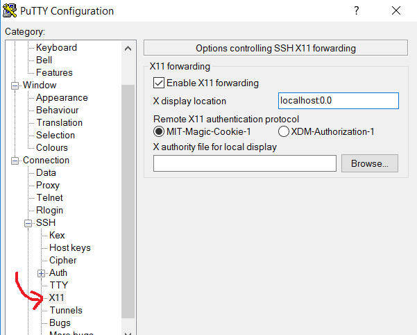 Ubuntu: X11 forwarding to view GUI applications running on server